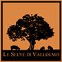 Le-Selve-di-Vallolmo-logo